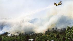 Foto de Menos incendios forestales respecto a la media de la década, pero se destaca imprescindible una gestión integral del monte