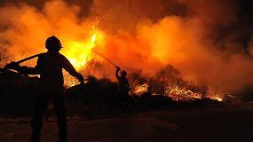 Foto de Emergencia civil por los pavorosos incendios forestales que asolan España