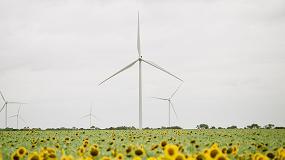Foto de Signify atinge neutralidade de carbono