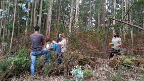 Foto de Sagefer sigue sumando usuarios y entidades que se unen a una gestión eficaz de los bosques