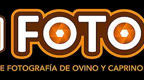 Foto de Galería Ovifoto 2019