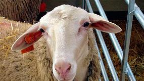 Foto de El catedrático Christian de la Fe aboga por la bioseguridad para reducir el uso de antibióticos