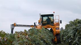 Foto de OIVE presenta la primera fase del 'Estudio de costes de producción de uva para la elaboración de vino en España'