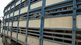 Foto de El MAPA determina las medidas a cumplir en el transporte animal