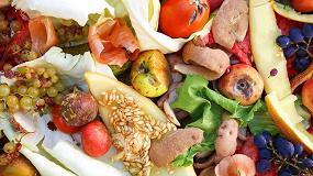 Foto de Valorización de los desperdicios de la producción y procesado de tomate, aceituna, patata y cereales