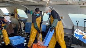 Foto de El sector pesquero insiste en la reducción del IVA del pescado para aliviar la crisis