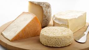 Foto de El consumo de queso en los hogares españoles se incrementa un 11,3% en el último año