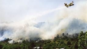 Foto de Los incendios forestales disminuyen en 2020