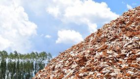 Foto de Zero pede suspensão de novas centrais de biomassa