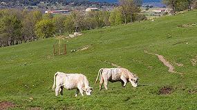 Foto de Preocupación entre los ganaderos por el RD sobre la fertilización de los suelos en España
