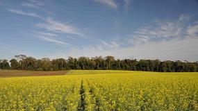 Foto de Los científicos avisan sobre la necesidad de recuperar un 20% de los hábitats autóctonos en zonas agrícolas