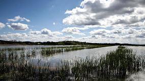 Foto de Regadio: potencial hídrico e hidroagrícola do Vale do Tejo e Oeste avaliado