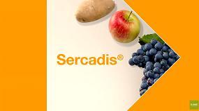 Foto de Sercadis® (ficha de produto)