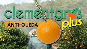 Foto de Clementgros Plus (ficha de produto)