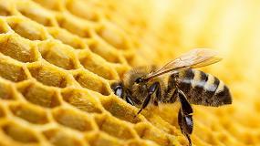 Foto de HoneyInstruments crea una báscula para colmenas con célula de carga de la empresa HBK