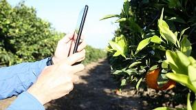 Foto de Kubota invierte en SeeTree, tecnológica especializada en la monitorización de árboles frutales