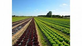 Foto de El sector del plástico agrícola adopta la Estrategia Europea de la Plasticultura promovida por APE Europe