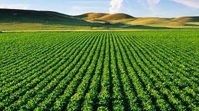 Foto de La exportación hortofrutícola cerró 2020 con 14.200 millones de euros