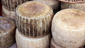 Foto de El queso puro de oveja apenas representa un 5% de los quesos consumidos en los hogares