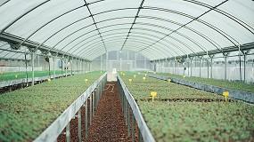 Foto de El valor de la producción hortofrutícola española ascendió a más de 18.000 M€ en 2020