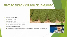 Foto de INTIA promocina la producción de legumbres ecológicas de consumo humano