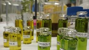 Foto de Un consorcio catalán desarrolla un sistema para detectar adulteraciones en el aceite de oliva