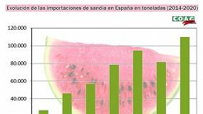 """Foto de La """"barra de libre"""" de sandías multiplica por 9 las importaciones en apenas 5 años"""