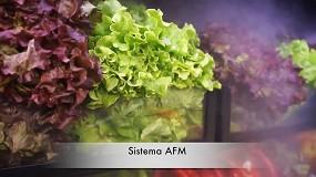 Foto de Sistema AFM - Nebulização Armários de Frutas e Legumes (vídeo)