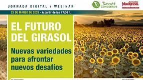 Foto de La mejora de las variedades, el factor clave en la evolución del cultivo de girasol en España