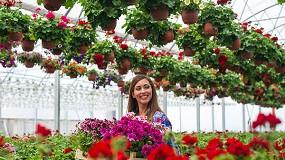 Foto de Tecnologia ReSPR para comércio de frutas, legumes, flores e estufas (ficha de produto)