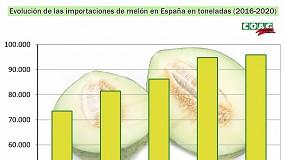 Foto de COAG denuncia la venta de melones de Brasil como si fueran españoles