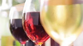 Foto de Levaduras, mannoproteinas y taninos para la vinificación actual