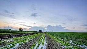 Foto de Pacto Ecológico Europeu: Bruxelas apresentou ações para estimular a produção biológica