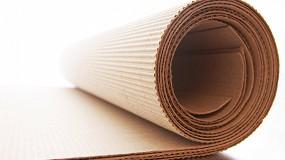 Foto de La industria española del cartón mantiene sus niveles de producción en 2020