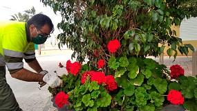 Foto de Más de 10.000 flores de temporada mejoran la imagen de pedanías de Murcia