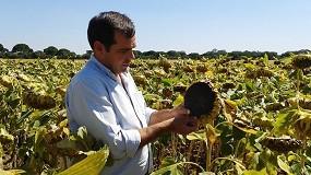 """Foto de """"La respuesta de la Comisión Europea sobre las nuevas técnicas genómicas debe alejarnos de los debates abstractos sobre las cuestiones agrícolas apremiantes"""""""