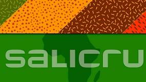 Foto de Salicru crea la división Salicru África