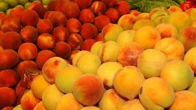 Foto de El sector frutícola reorienta la producción tras un 2020 marcado por los cambios en la demanda