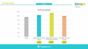 Foto de Phylgreen, efectividad probada contra el estrés térmico en cítricos