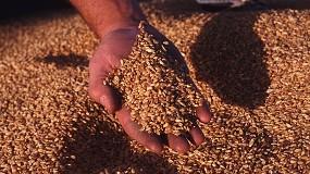 Foto de El interés especulativo mundial por las materias primas agrarias impide divisar el techo del mercado