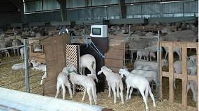 Foto de Jornada de debate sobre los resultados en innovaciones de ganadería de precisión