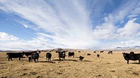 Foto de 'Balam Agriculture&Alltech-Planet of Plenty': o projeto que pretende tornar o setor agrícola mais sustentável