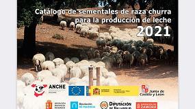 Foto de La raza ovina Churra ya cuenta con los nuevos catálogos de mejorantes de leche y carne en 2021