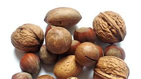Foto de CNCFS promove palestras técnicas sobre frutos secos