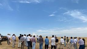 Foto de Ministra da Agricultura anuncia pagamentos ligados ao setor dos cereais