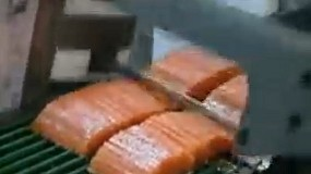 Foto de Máquina de corte vertical SM5290 para fatiar salmão e cavala (vídeo)
