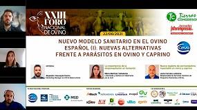 Foto de Nuevas alternativas para afrontar el problema de los parásitos en ganado ovino y caprino