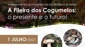 Foto de 'A fileira dos cogumelos: presente e futuro' em debate a 1 de julho