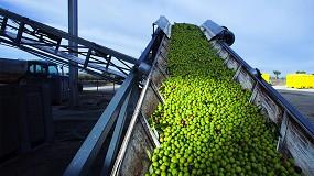 Foto de 'Valorização de bagaço de azeitona: um problema resolvido, mas não otimizado'