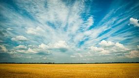 Foto de Já é possível aceder às estatísticas agrícolas de todos os países da UE